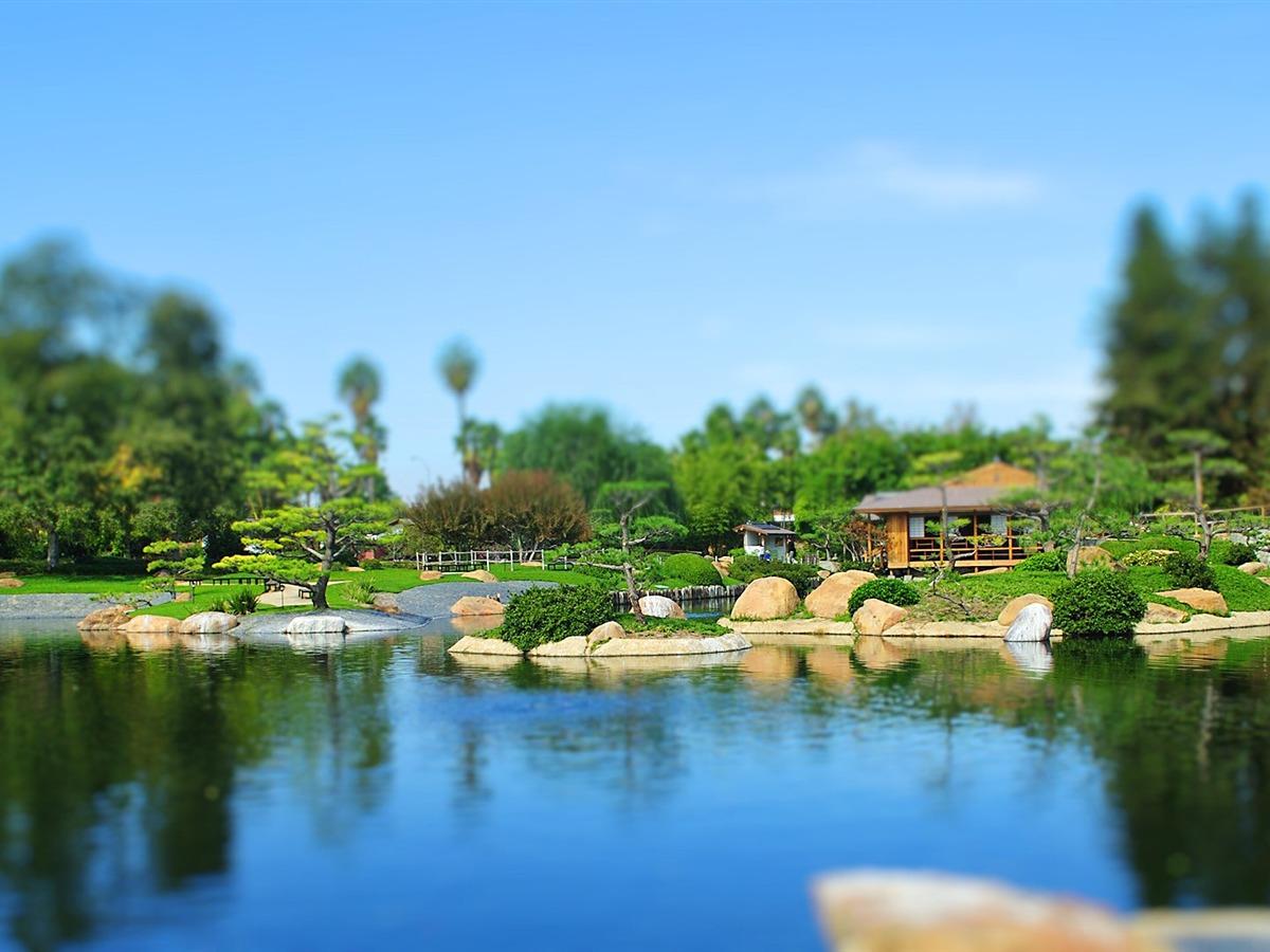 Jardin japonais changement de photographie papier peint aper u - Fond d ecran jardin anglais ...