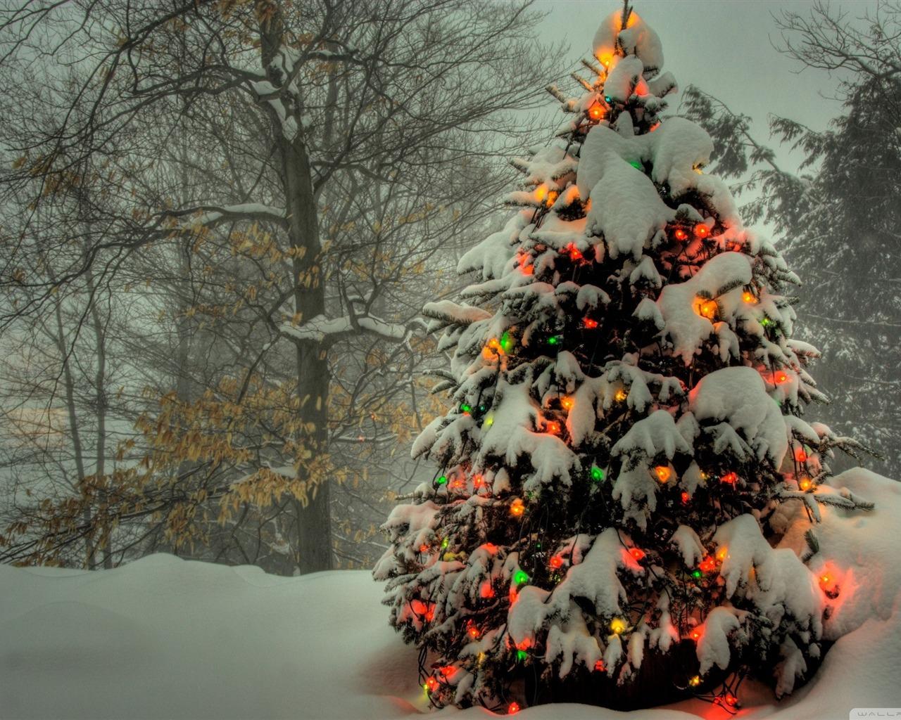 christmas tree desktop wallpaper 1280x1024 - photo #19