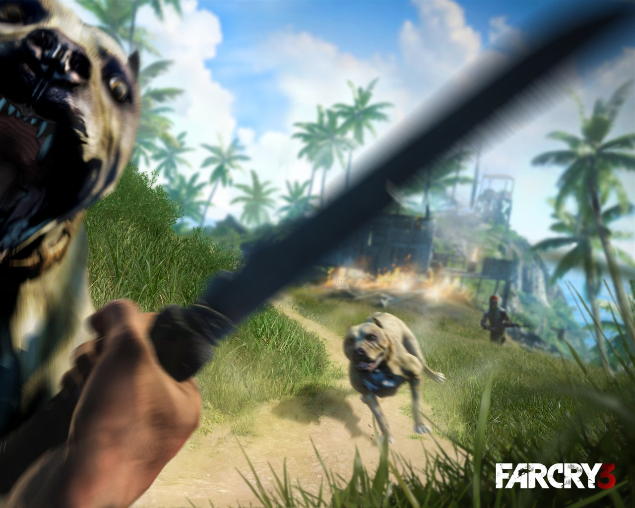 2012 Far Cry 3 Game Hd Wallpaper 11 Preview 10wallpaper Com