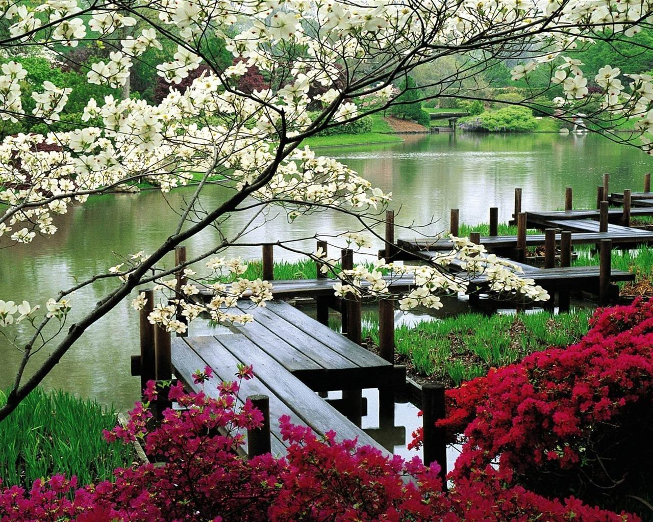 Jardin japonais paysage naturel cran fond d 39 cran for Jardin japonais fond d ecran