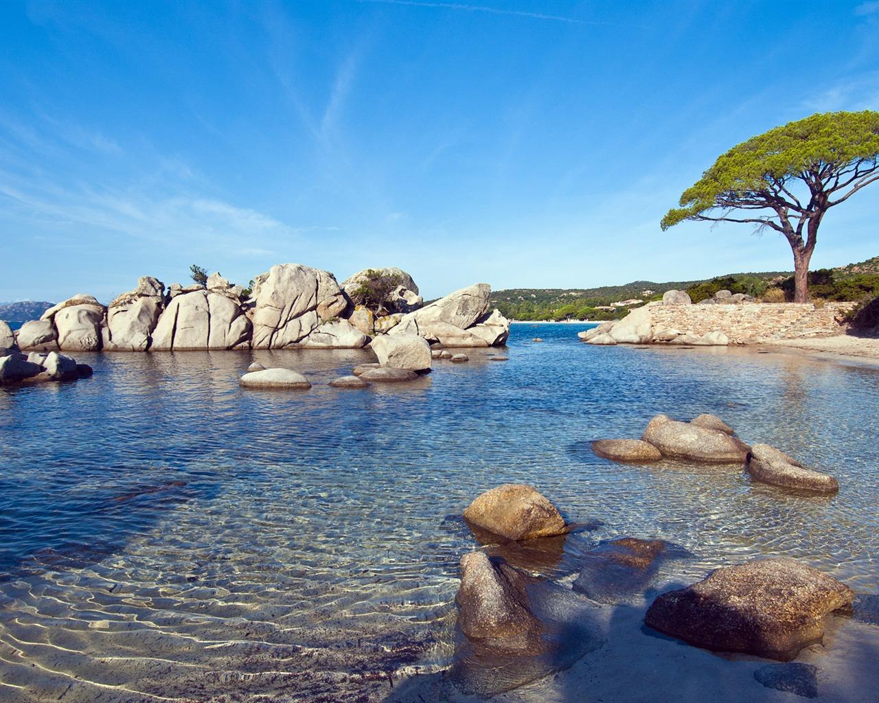 Sunny Shores Theme