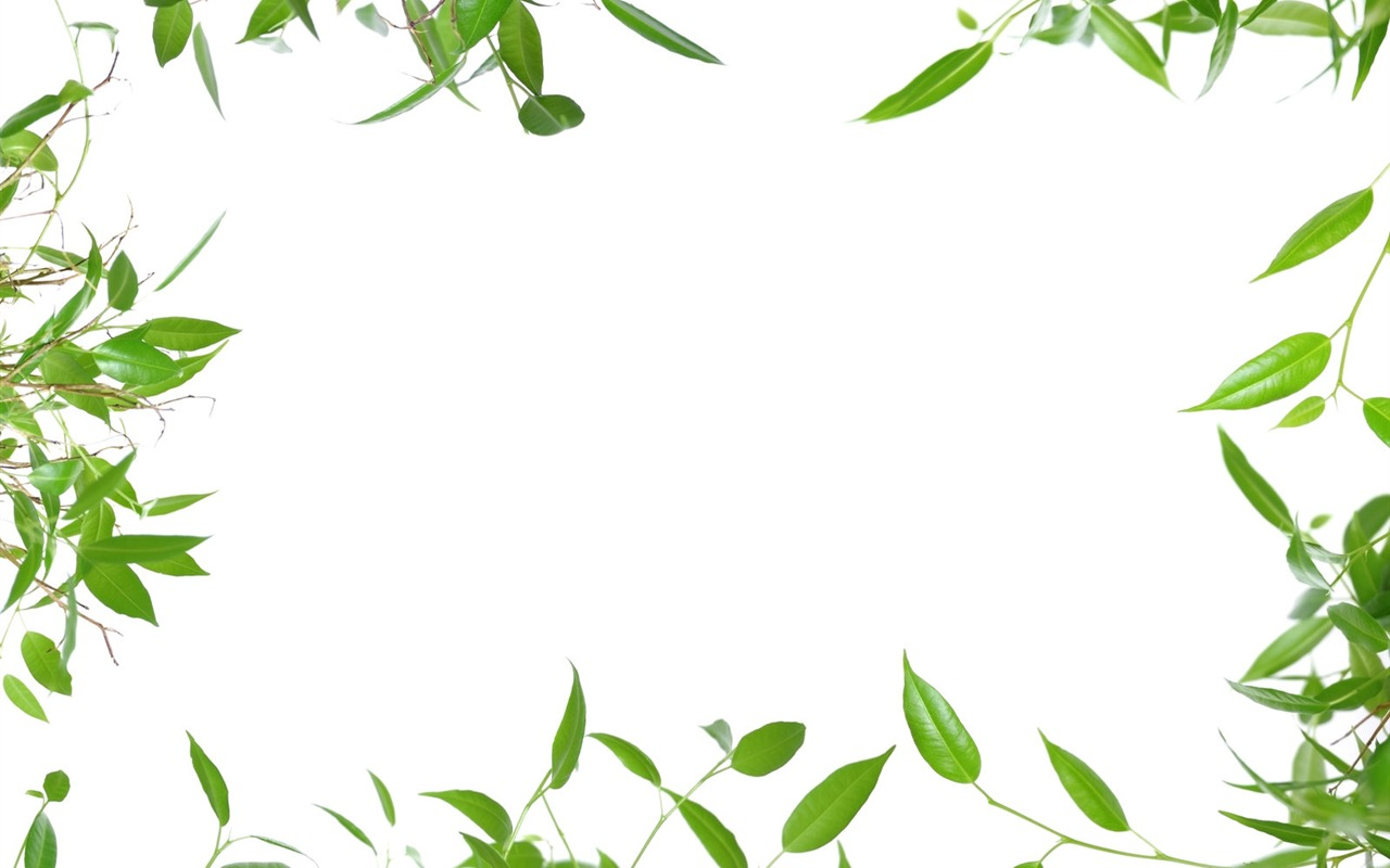 Check Mark Symbol Clip Art 11252 Moreover Grass Wallpapers Hd Pictures