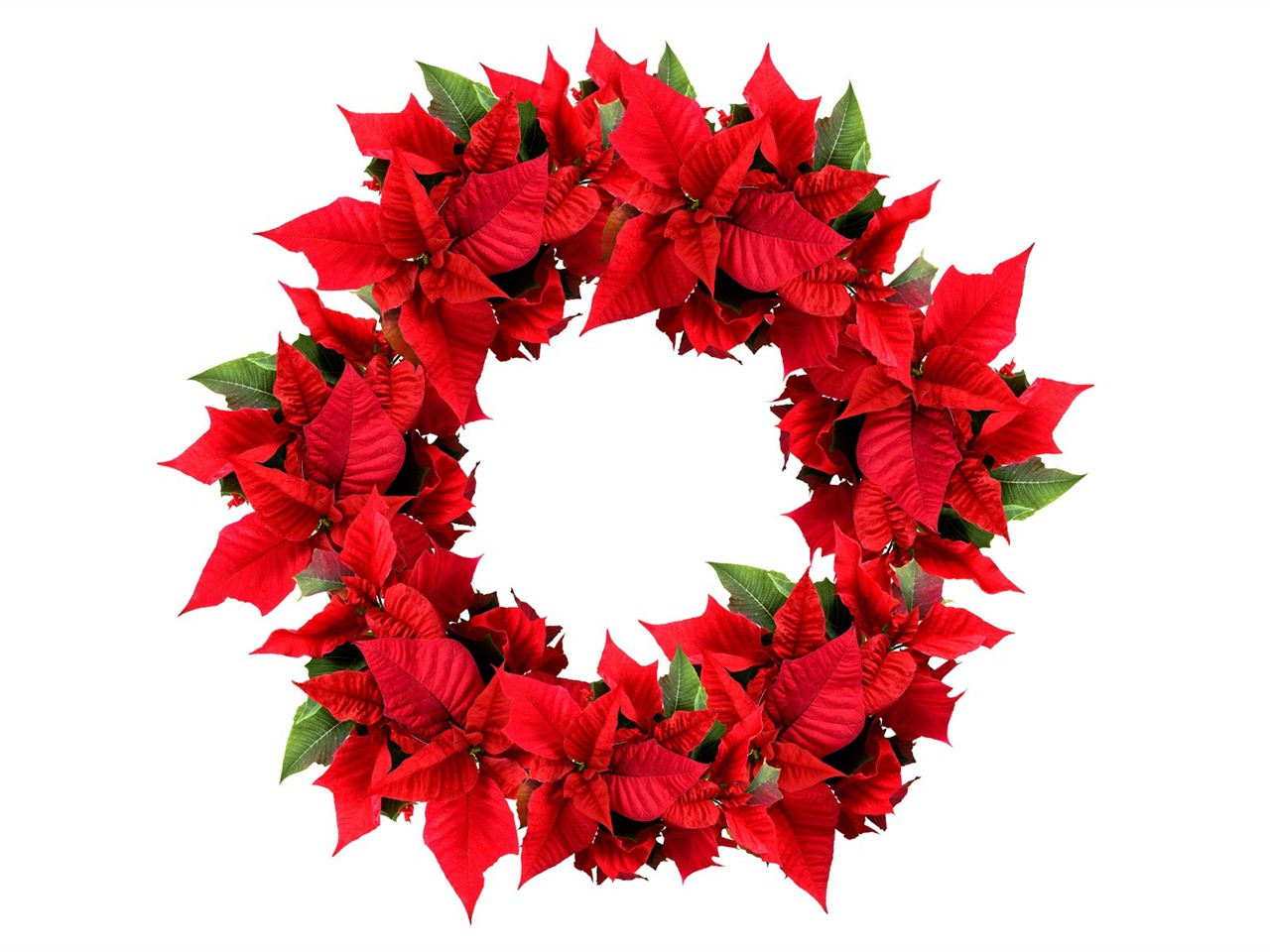 Picture- Christmas Wreath- Christmas Poinsettia Wreath ...