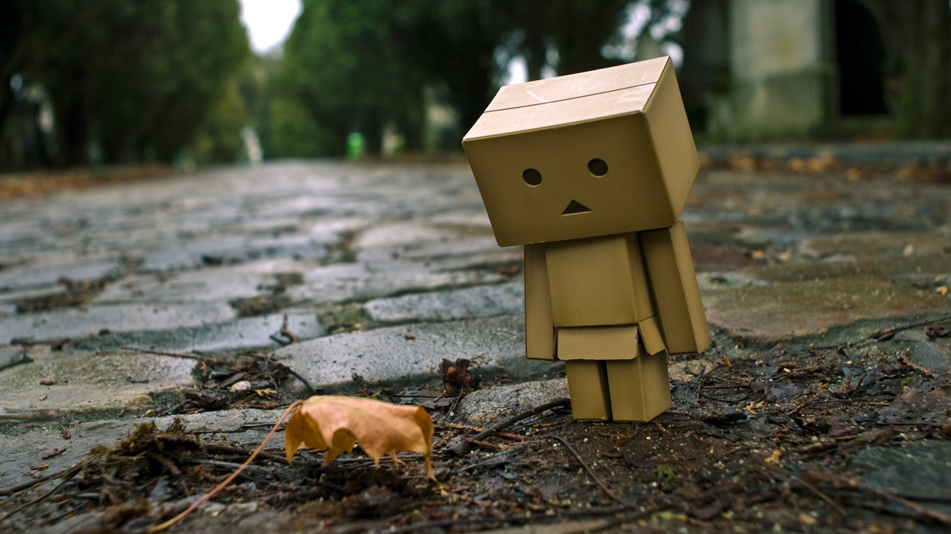 Danbo_in_Park_-_Danbo_Danboard_Wallpapers_012011.5.28