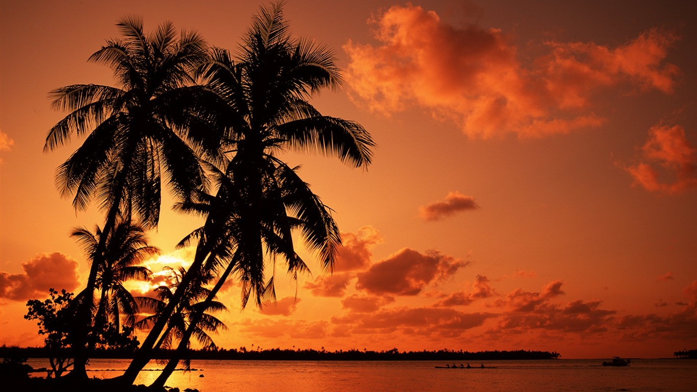 red_sunset_beach_under_palm_trees_wallpaper
