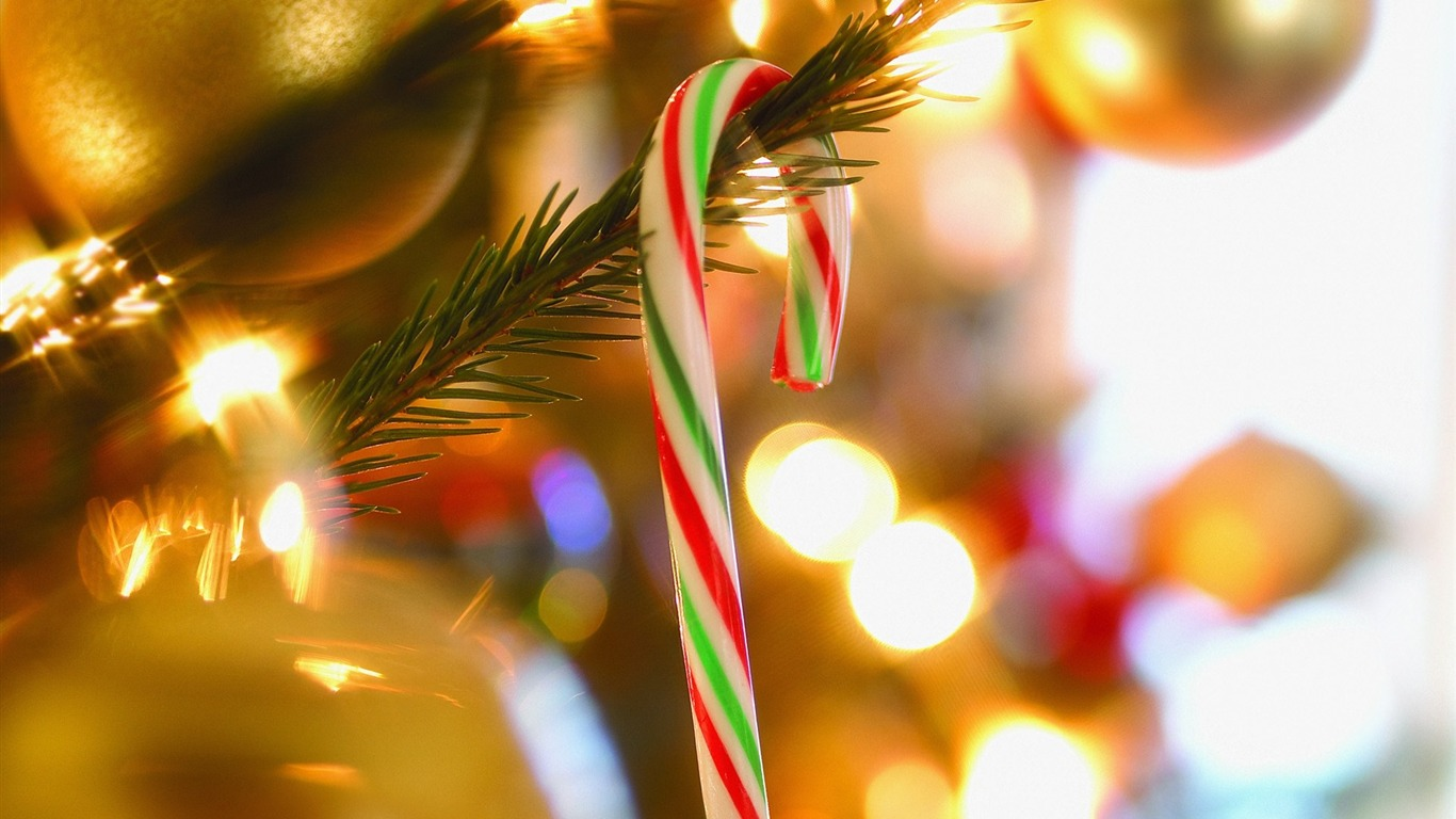 Photo Candy Cane On Christmas Tree Preview 10wallpaper Com