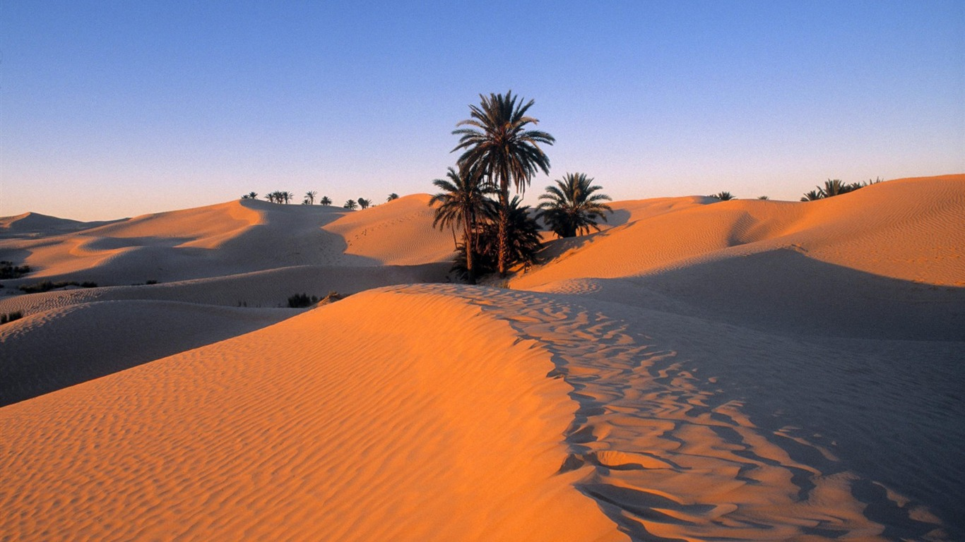 40 Tunisia Sahara Desert Wallpaper Preview 10wallpaper Com