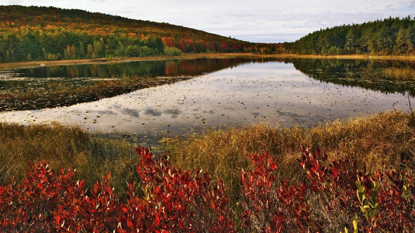 6 Maine-Acadia National Park Wallpaper
