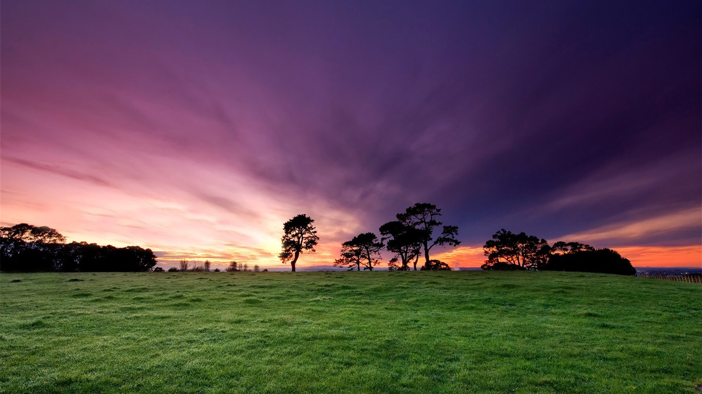 New ZealandBeautiful Morning Sunrise at Cornwall ParkAuckland