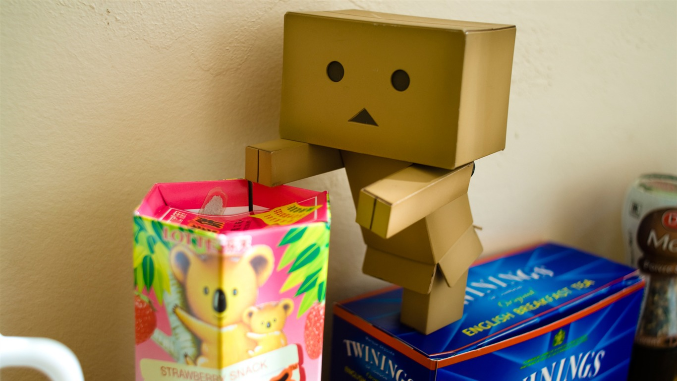 danbo_wallpapers-Second_Series_042011.8.11