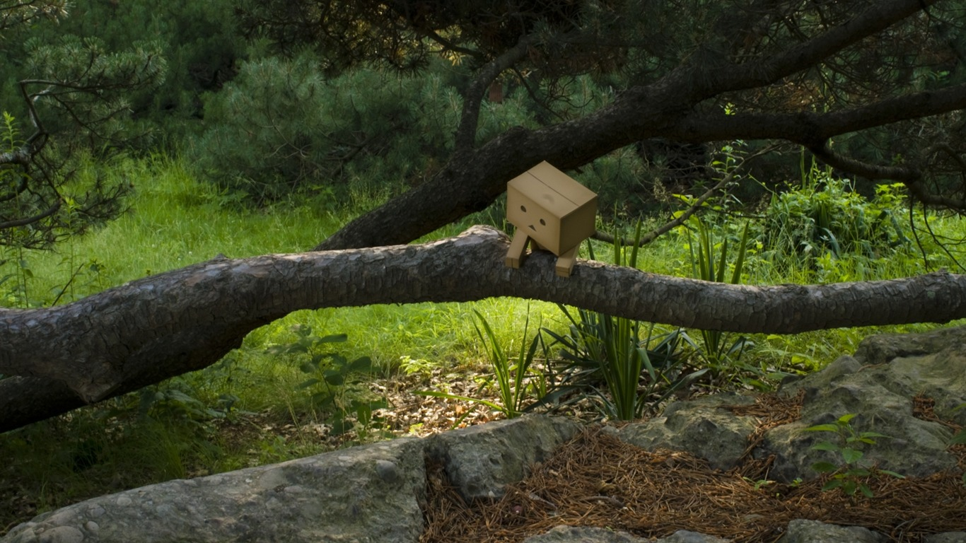 danbo_wallpapers-Second_Series_072011.8.11
