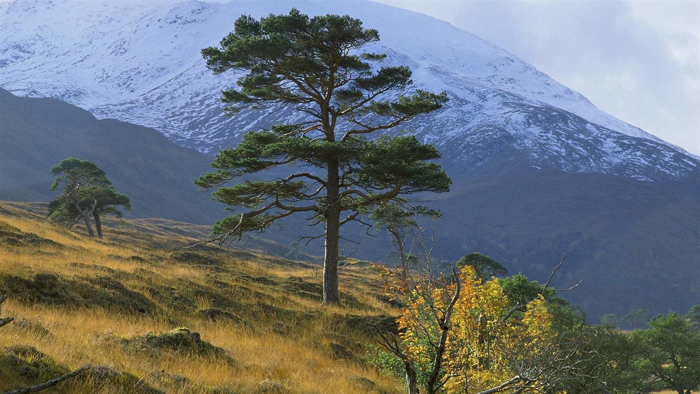 Scottish Landscape Wallpaper Preview 10wallpapercom