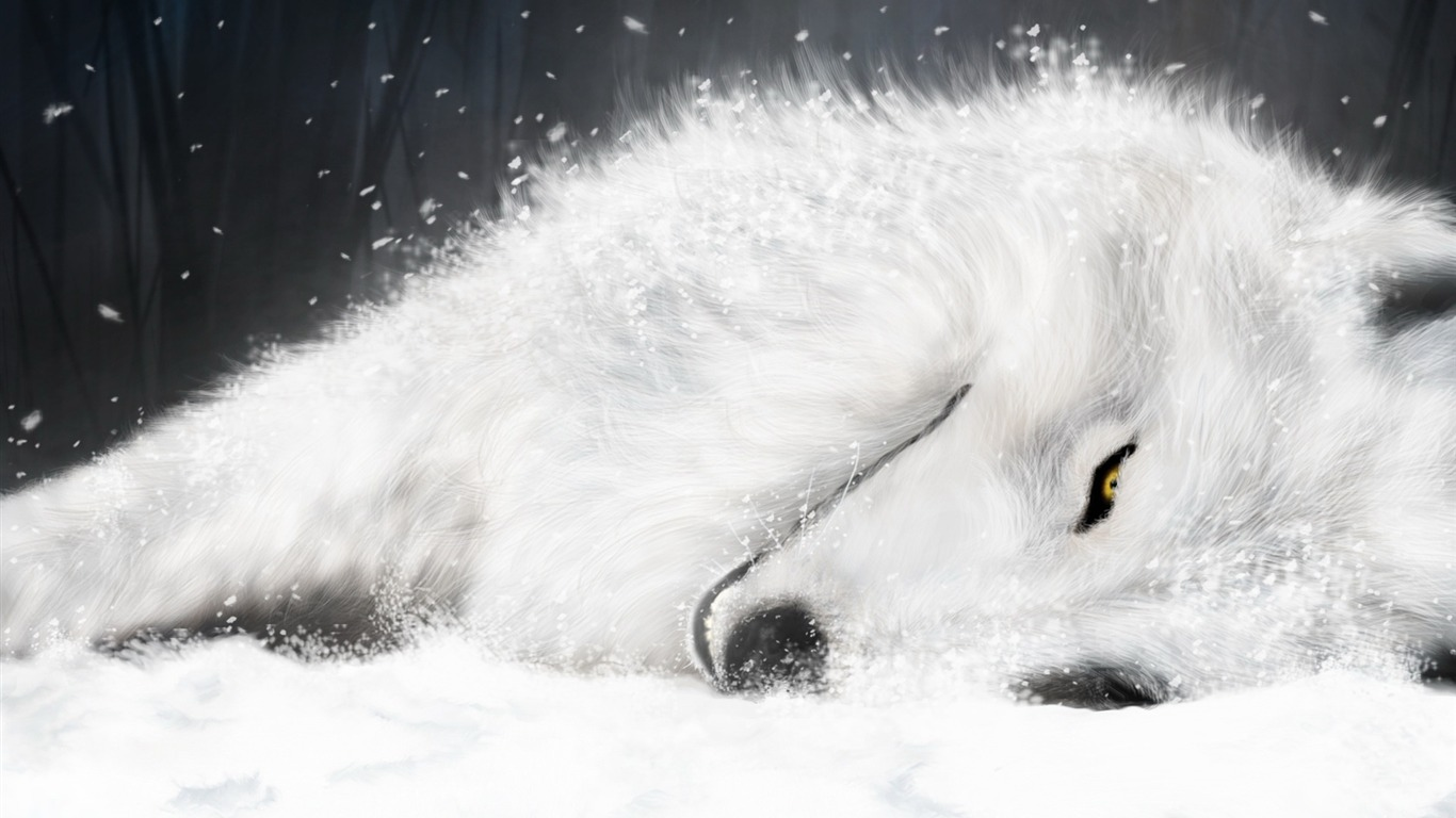https://www.10wallpaper.com/wallpaper/1366x768/1109/Sleep_in_the_snow_and_ice_on_the_white_fox-Animal_World_Series_Wallpaper_1366x768.jpg