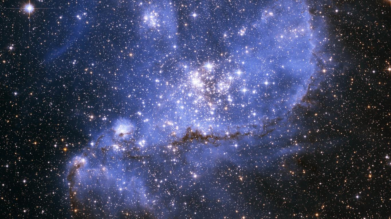 Description  The stars...