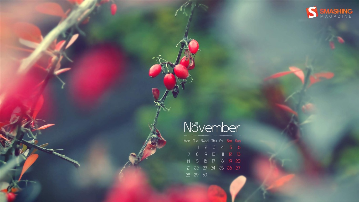 Autumn_Impression-November_2011-Calendar_Desktop_Wallpaper2011.11.1