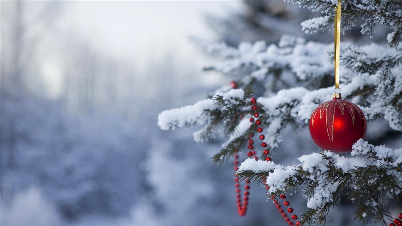 Christmas In The Woods.Christmas In The Woods Wallpaper Preview 10wallpaper Com