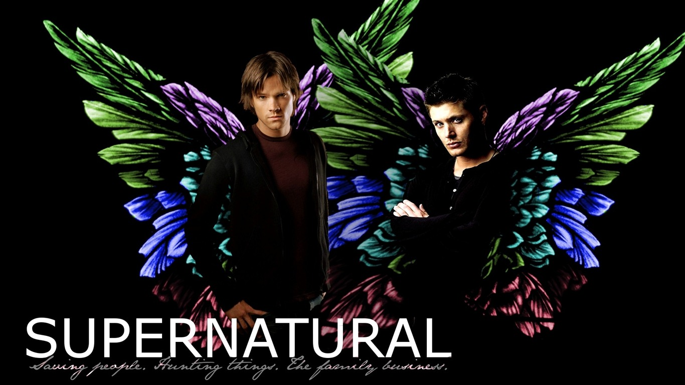 Dean_and_Sam_-Supernatural-HD_Desktop_Picture2011.12.21