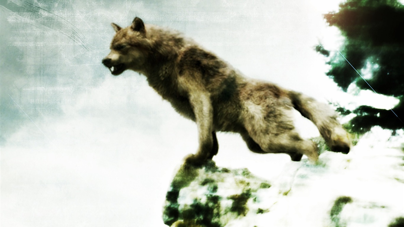 Jacob Black Werewolf Forma The Twilight Saga Series Película