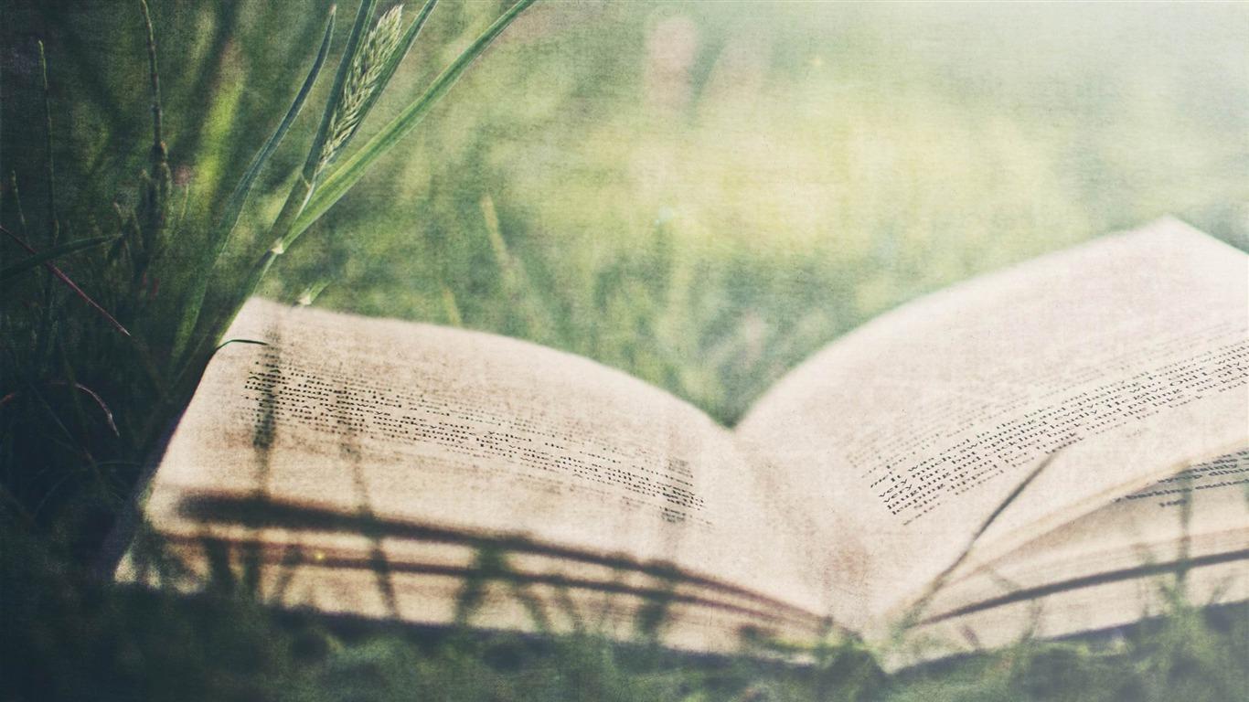 緑の芝生の上で開いた本 夏の風景の壁紙プレビュー 10wallpaper Com