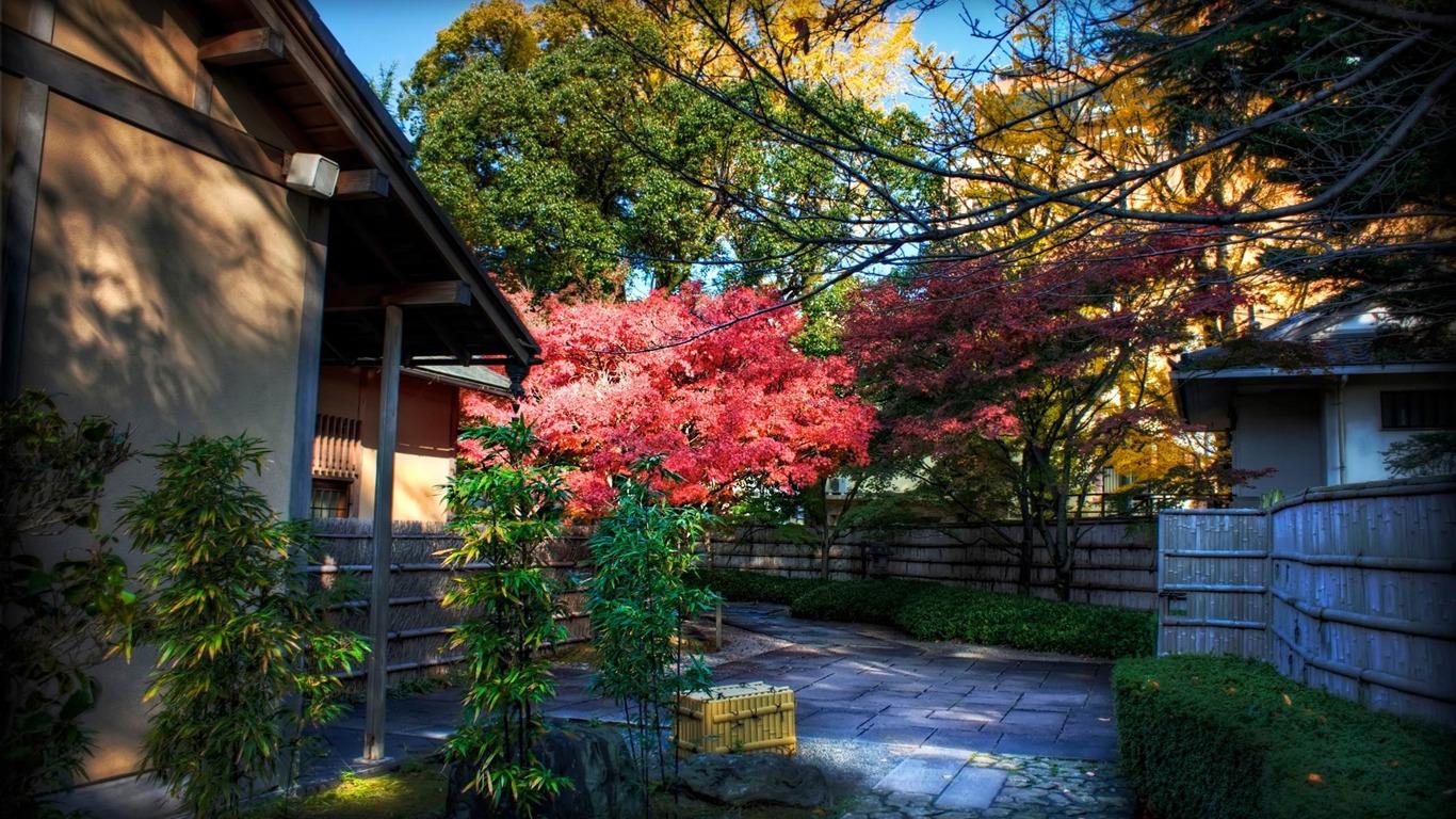 momiji behind tea house-Japanese Landscape Wallpaper Preview | 10wallpaper.com