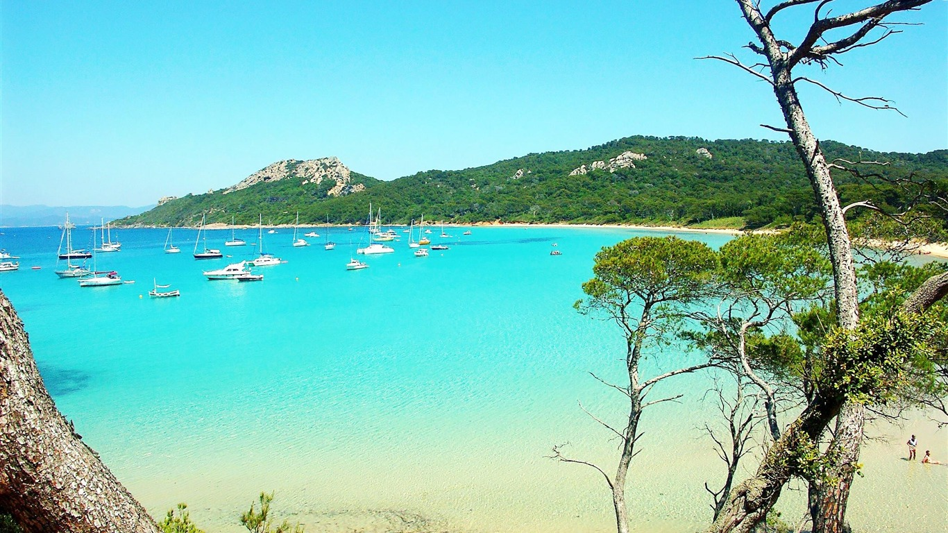 France_Porquerolles-Nature_Wallpapers2012.9.1