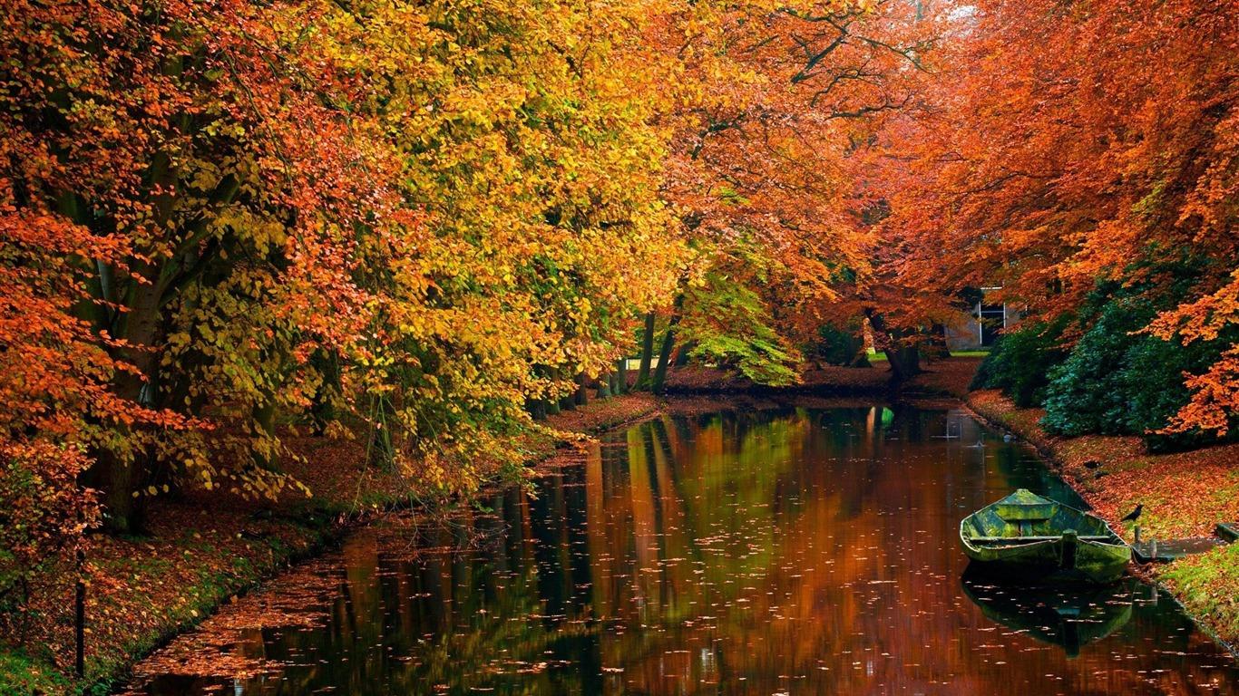 秋の湖 秋の風景の壁紙プレビュー 10wallpaper Com
