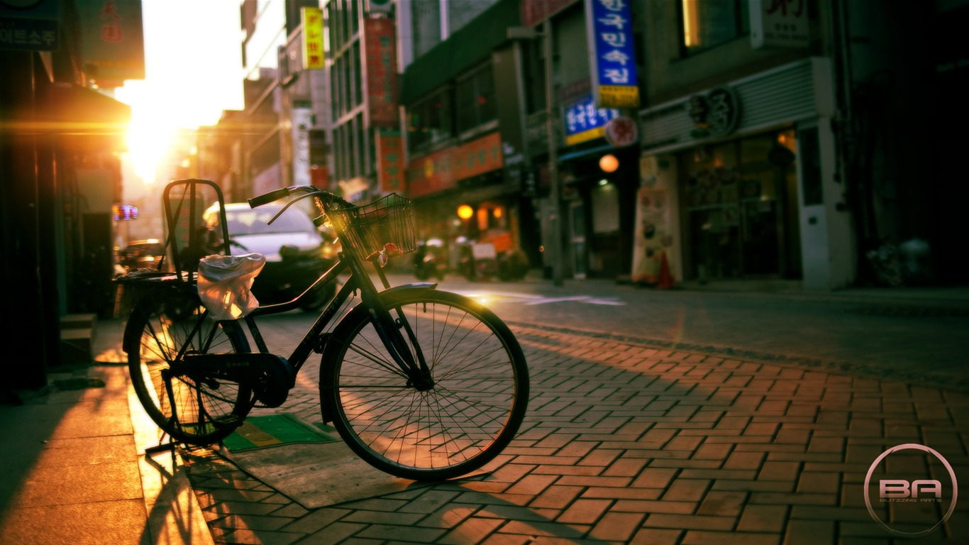 Bicycle_theme_photography_widescreen_wallpaper_152013.2.8