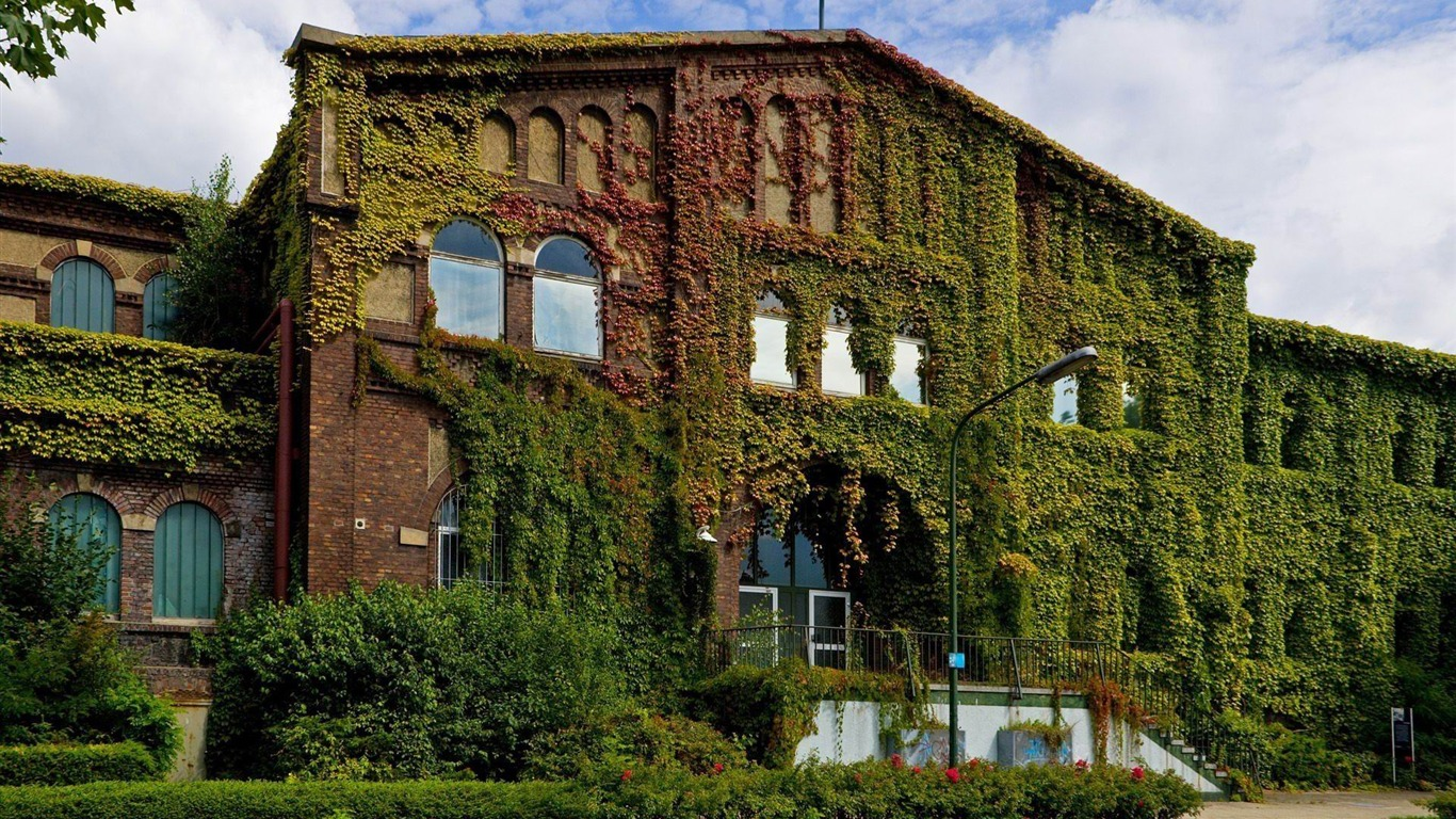 Overgrown House City Travel Photography Wallpaper Preview 10wallpaper Com