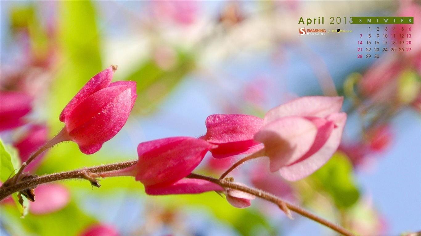 Color_Of_Spring-April_2013_calendar_desktop_wallpaper2013.4.1