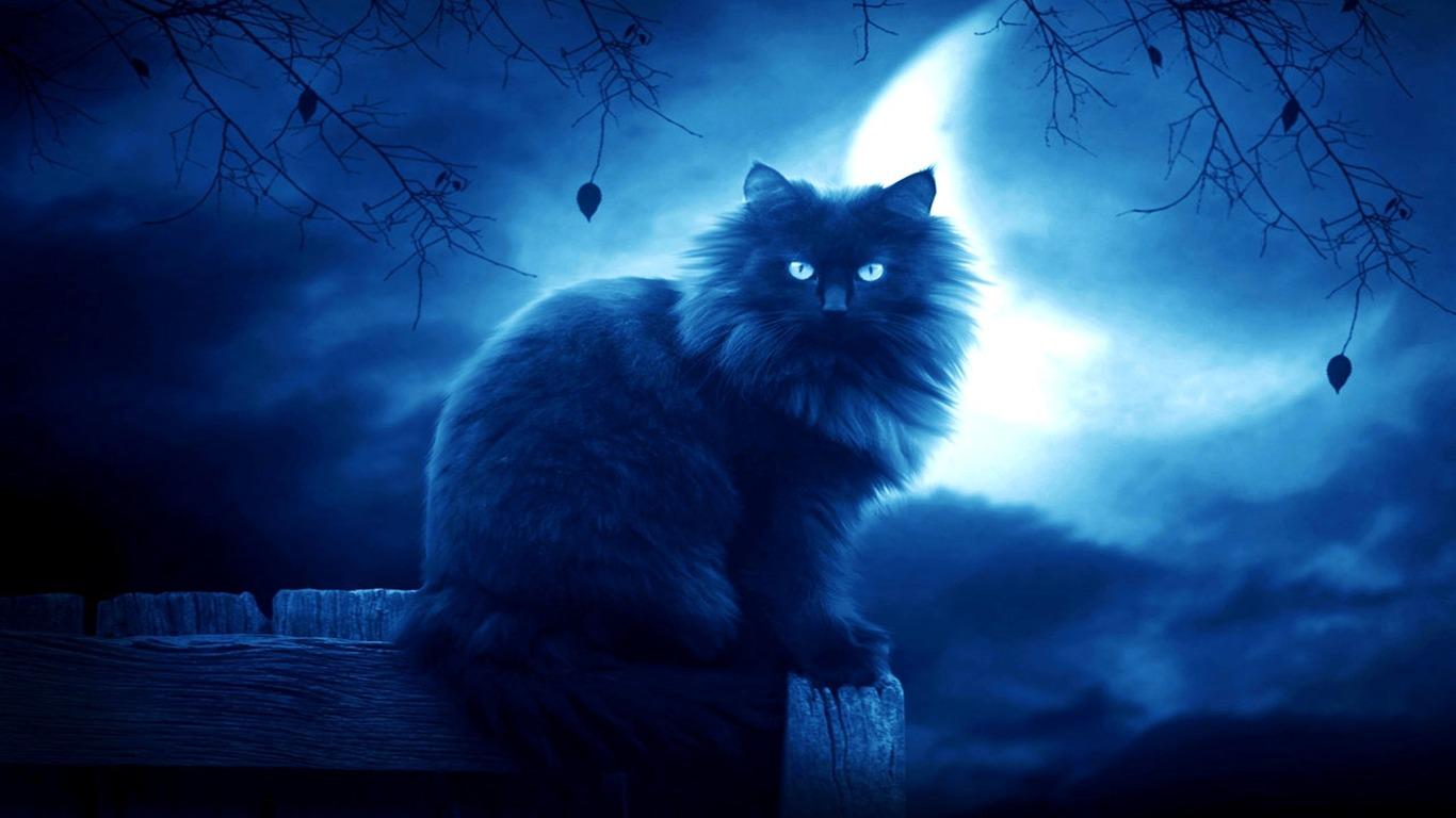 Esboco Da Silhueta Da Noite Da Lua Negra Do Gato Desenho De