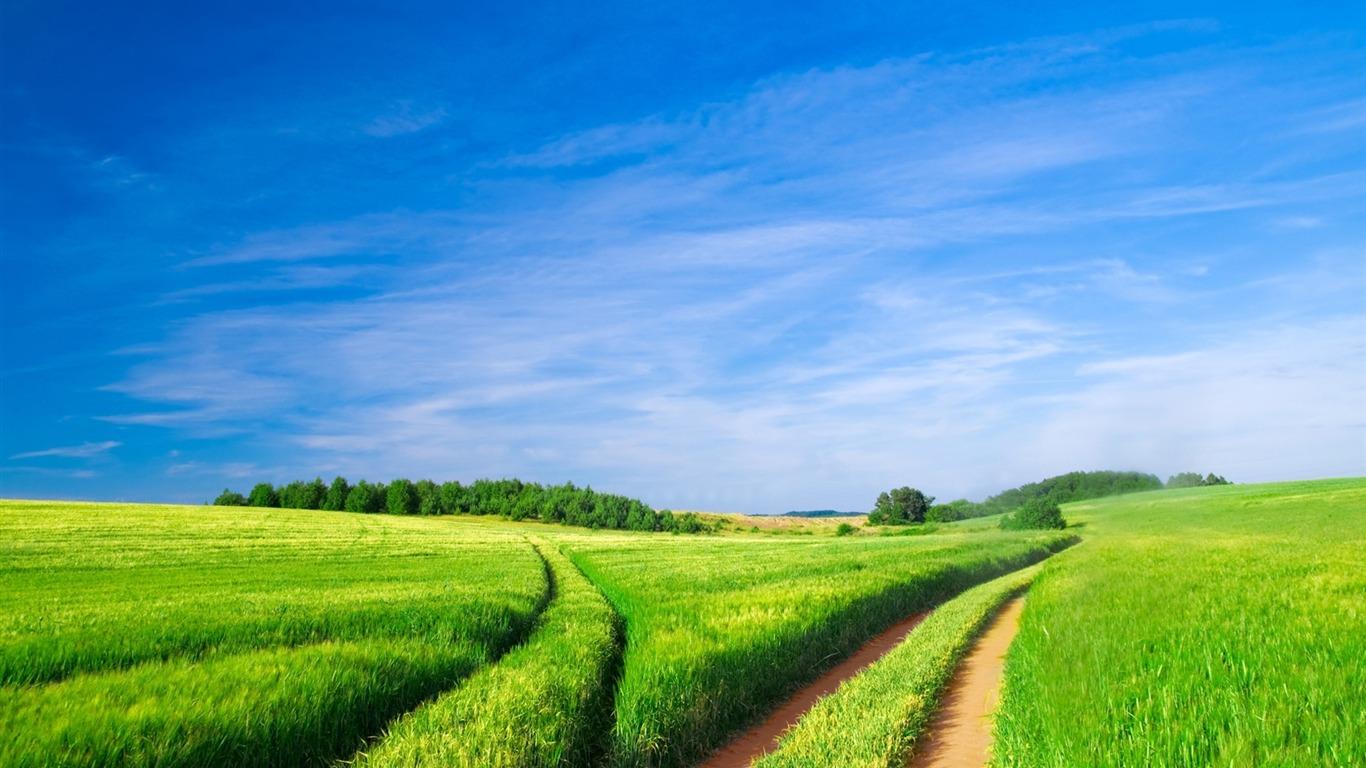 Espace vert un paysage naturel fond d 39 cran aper u for Paysage espace