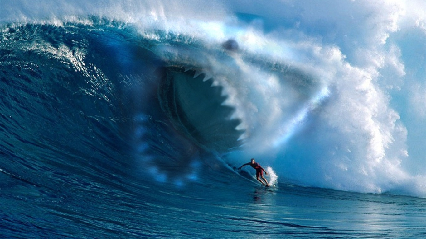 Wave Shark Surfing Sports Fondo De Pantalla Hd Avance