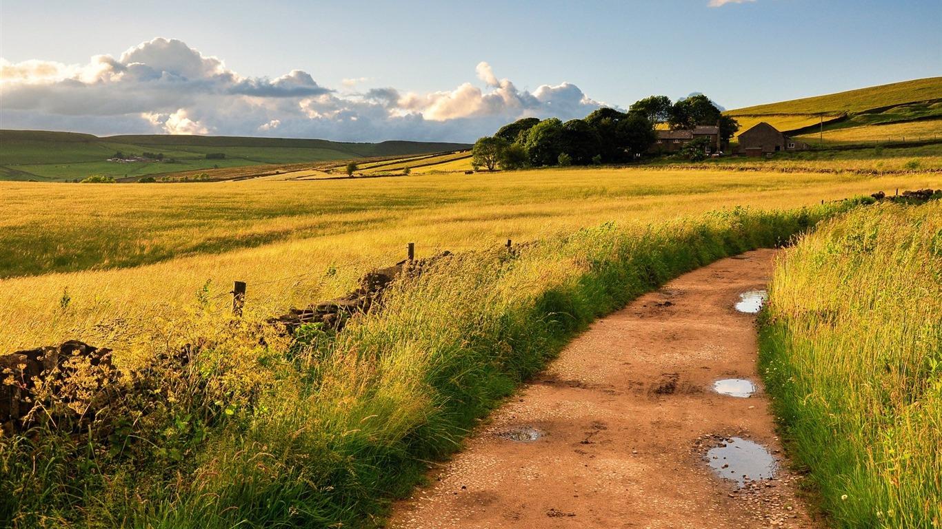 田舎の道 風景のhd壁紙プレビュー 10wallpaper Com