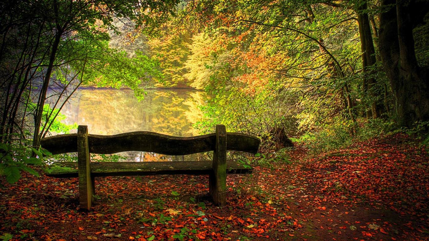 Empty Bench In Fall Scene Landscape Hd Wallpaper Preview