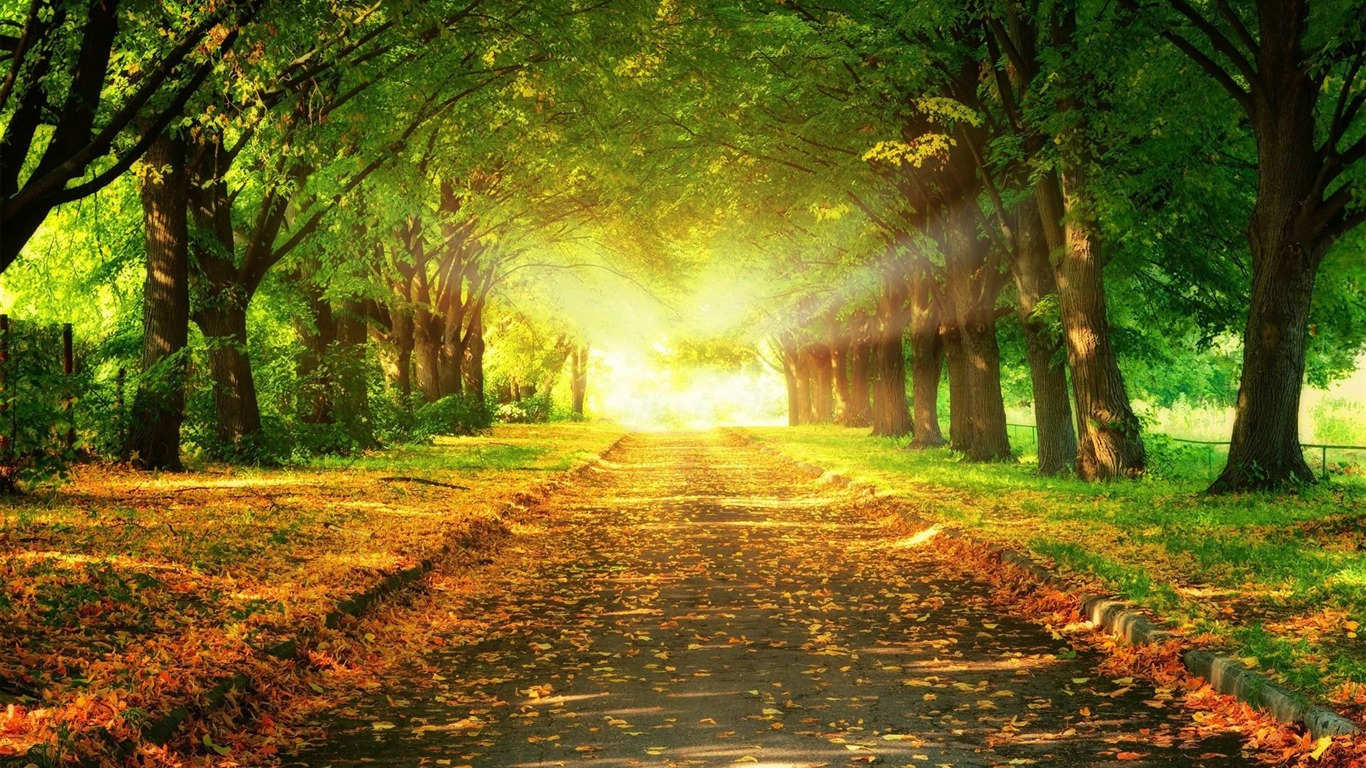 道の終わりに光 風景のhdの壁紙プレビュー 10wallpaper Com
