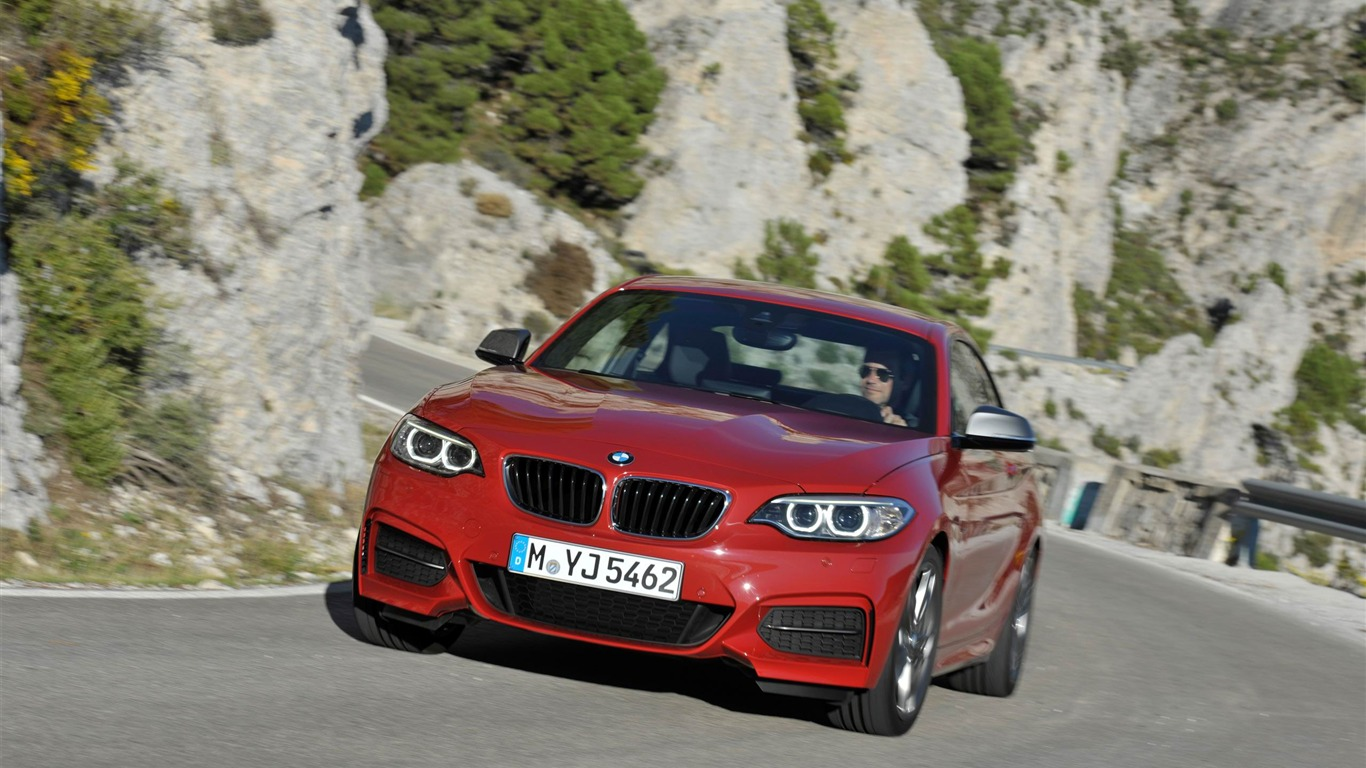 2014_BMW_M235i_Coupe_Car_HD_Wallpaper_042013.11.1