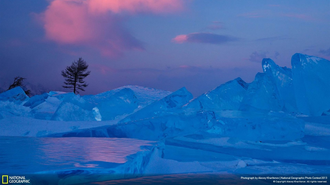 Dreams_of_the_lonely_larch-National_Geographic_Wallpaper2013.11.21