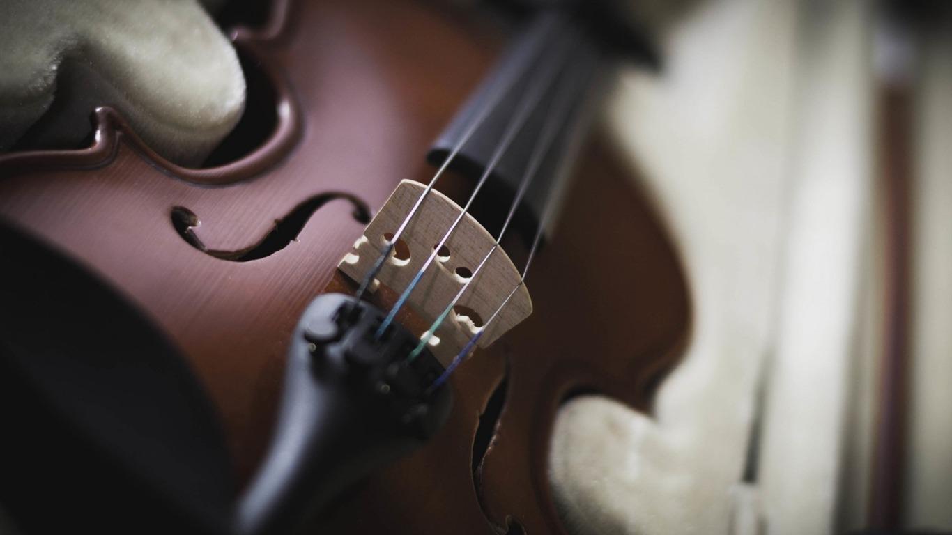 バイオリンの楽器 音楽壁紙プレビュー 10wallpaper Com