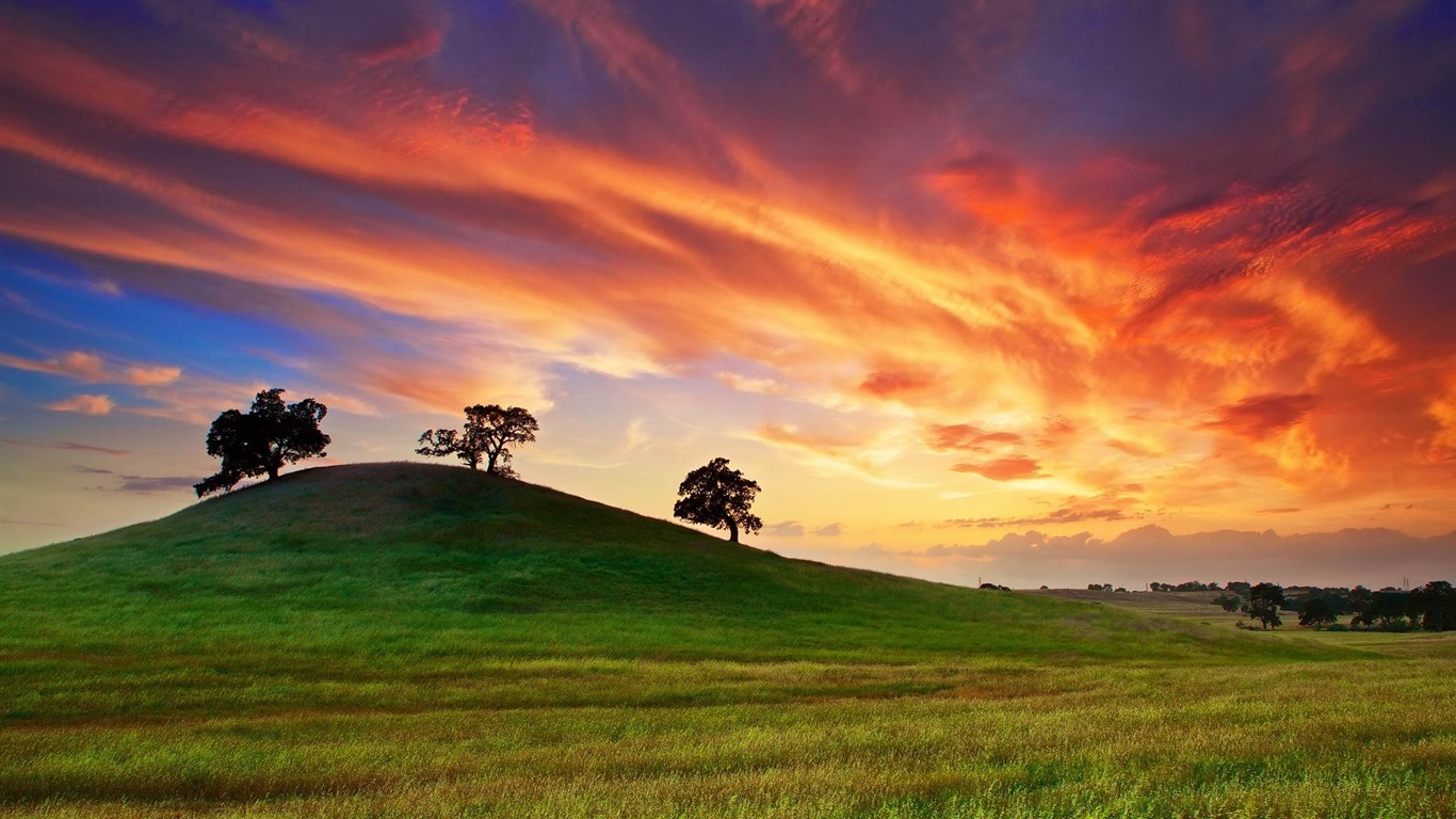 california_sunset_spring-Nature_Photo_Wallpaper2014.4.19
