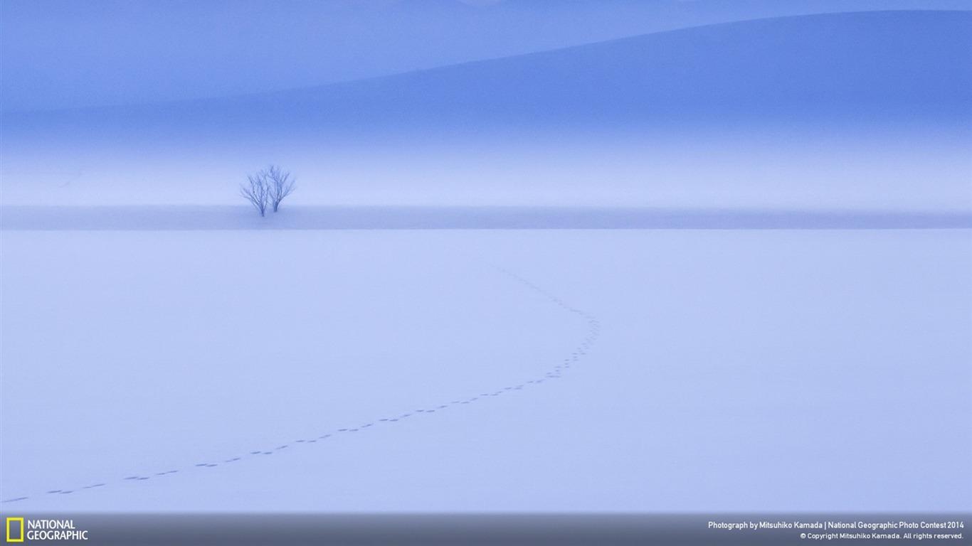 美瑛日本北海道 国家地理壁纸预览 10wallpaper Com