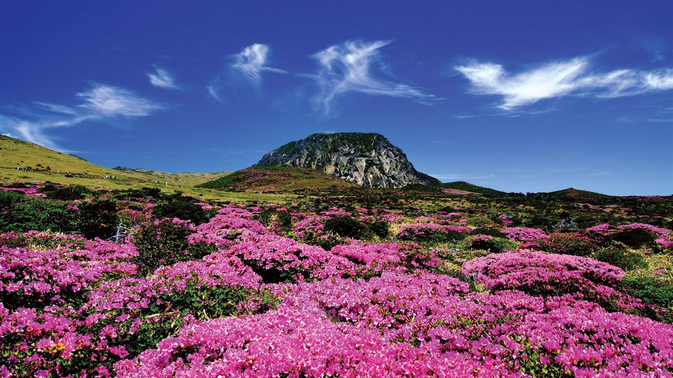 Jeju_Island_Korea_Life_Landscape_photo_Wallpaper_032014.11.20
