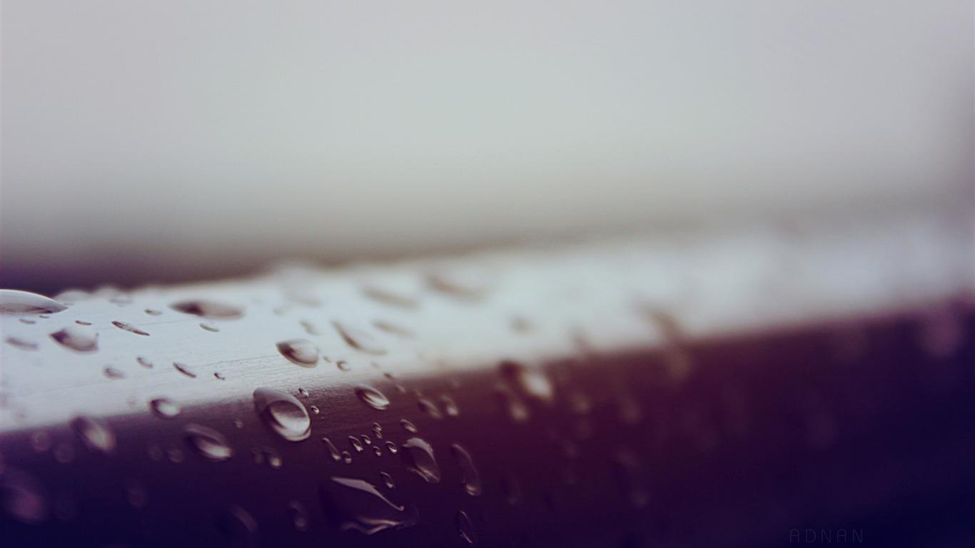 雨は マクロを削除します 高品質hdの壁紙プレビュー 10wallpaper Com