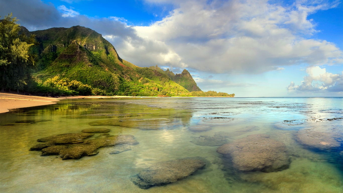Usa Hawaii Kauai Beach Windows 10 Theme Hd Wallpaper Preview