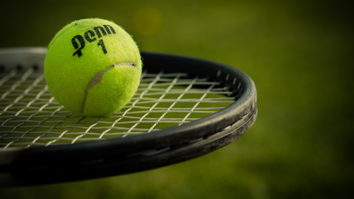 Sports / Tennis ball and racket-Sports themed wallpaper