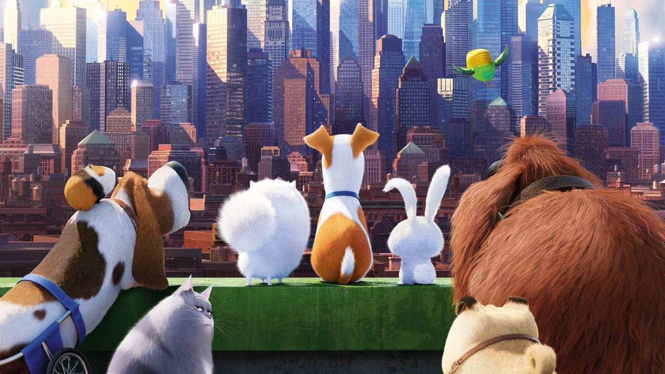 La Vida Secreta De Los Animales Domésticos 2016 Movie High Quality Wallpaper Avance 10wallpaper Com