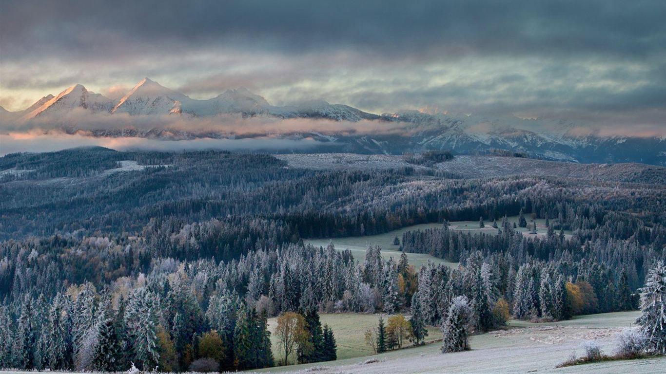 Primer Toque De Invierno National Geographic Photo Wallpaper