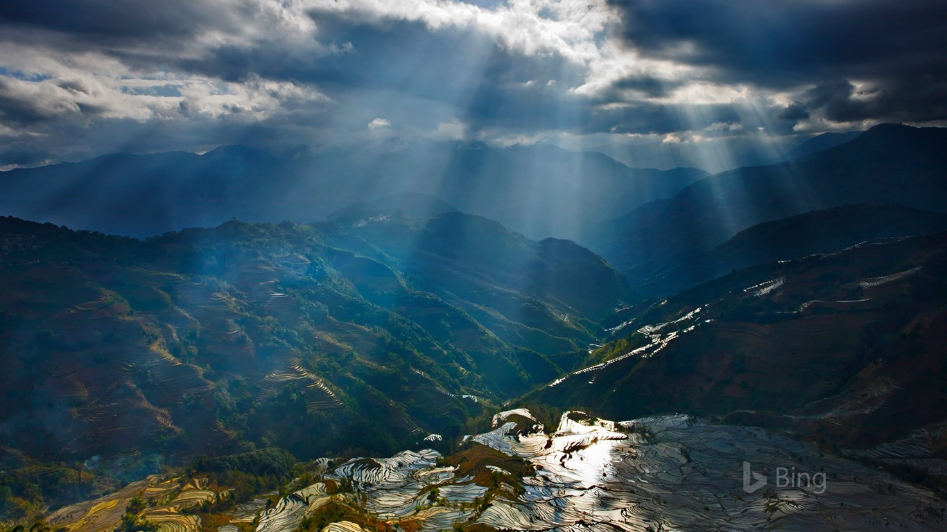 sunlight rice paddy terraces china2016 bing desktop