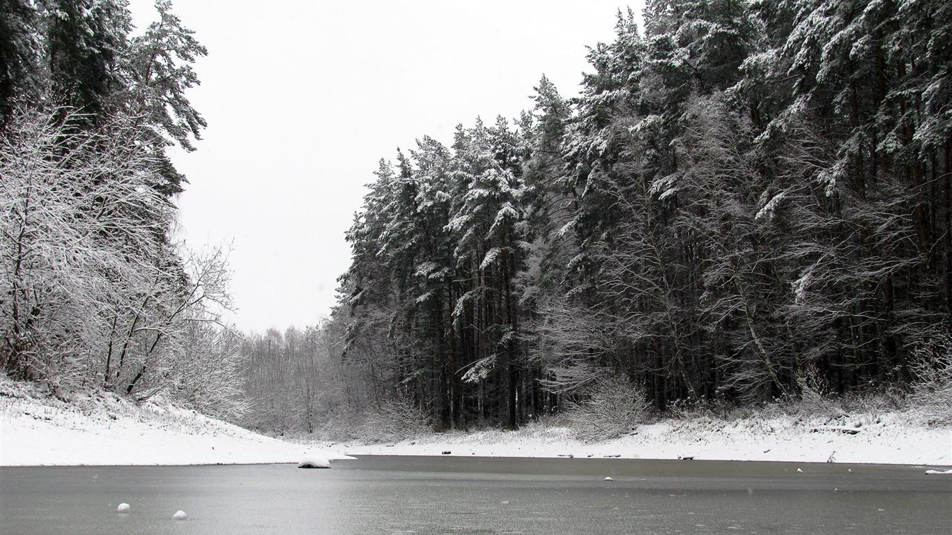 River Winter Trees Ice Snow Black White 2016 Nature Hd