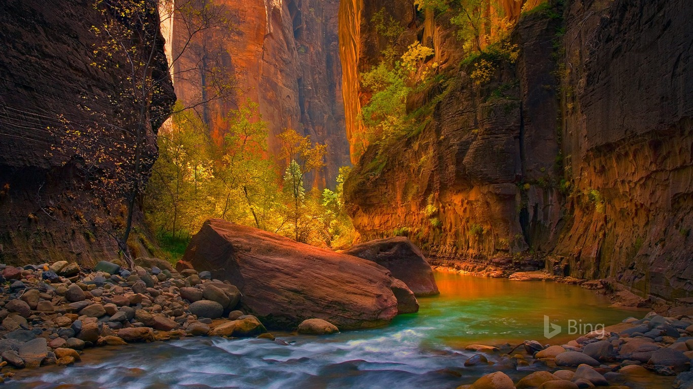 Utah The Virgin River In Zion National Park 2017 Bing Desktop