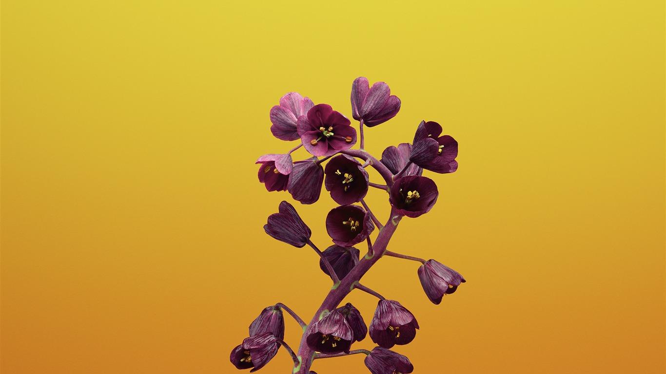 Fritillaria Apple Ios 11 Iphone 8 Iphone X Hd Wallpapers
